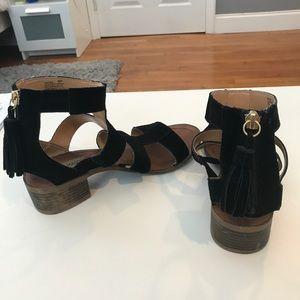 aefbd057647a Steve Madden Shoes - Steve Madden Daviss black suede Gladiator Sandal