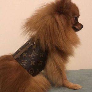 3ade88488f07 Other - Louis Vuitton Pet Dog Harness