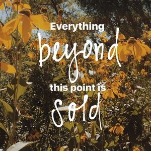 Other - Everything beyond this point is sold!