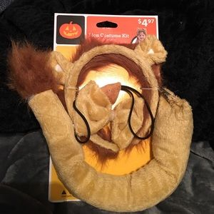 Other - Kids Lion costume kit