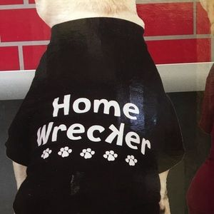 Casual Canine Other - Dog Clothing, tee shirt