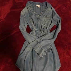 Liz Lange denim dress