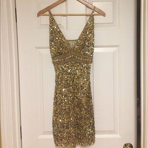 Arden B. Sequin Dress