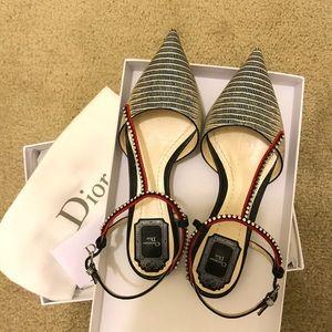 Dior Limited Edition Ballerina