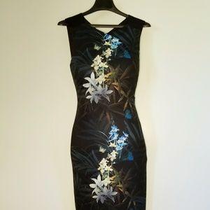 Stunning Ted Baker Loua Midi Dress XS