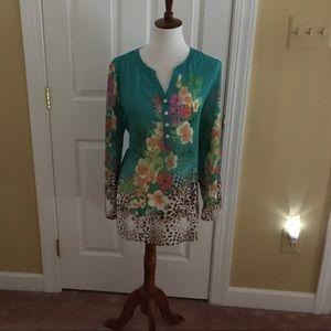 Sheer long Sleeved Soft Surroundings blouse.