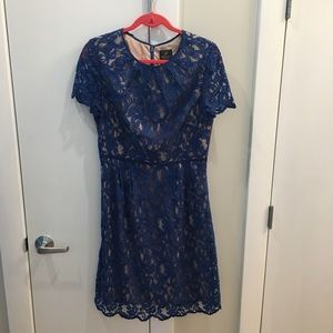 Adrianna Papell Blue Dress 12
