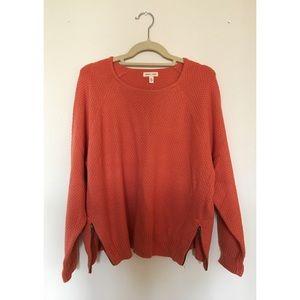 NWOT Silence & Noise Double Zip Sweater