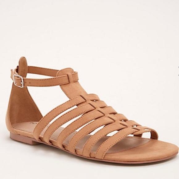 1af062d4057c 10.5 🆕 Wide Width Faux Suede Gladiator Sandal