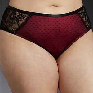 Microfiber Mesh Lace Cheekster Panty