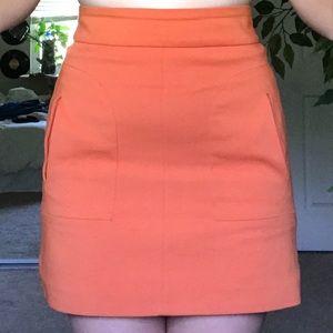 Zara Mini-Skirt