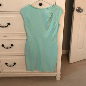 The Limited -mint colored form fitting dress