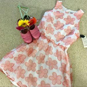 BB Dakota flirty party dress!