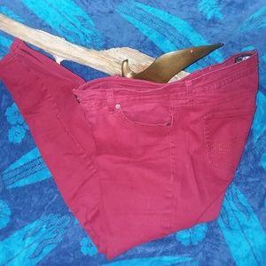 Jordache Women's Red Fitted Low Waist Jeans