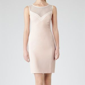 Reiss Lansky Dress in Faint Rose