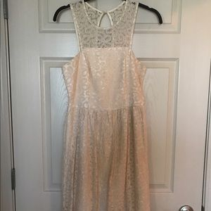 The Limited Lace A-line dress