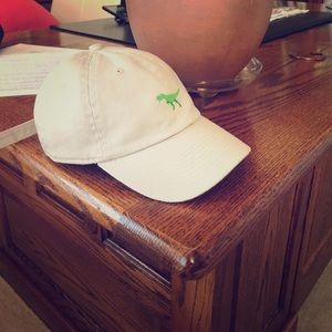 Other - Dinosaur hat.