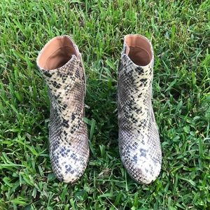 Urban Outfitters snake booties