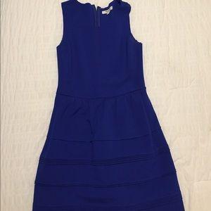 Gorgeous Madewell Dress