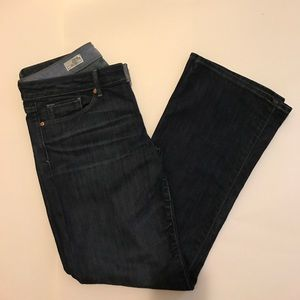 GAP 1969 sexy boot cut jeans - 29 -8A