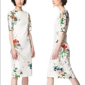 "Zara Collection Floral ""Canvas"" dress"