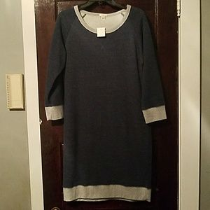J. Crew Sweat Shirt Dress