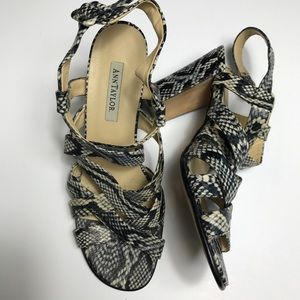 Ann Taylor Snake Print Chunky Heel