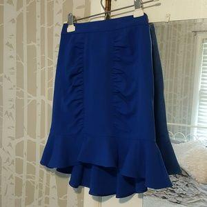 Anthropologie Skirt size 0 NWT