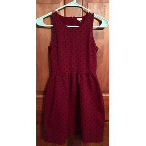J.Crew Burgundy and Black Velvet Polka Dot Dress