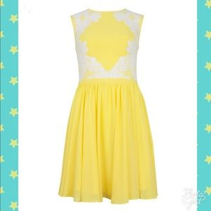 Ted Baker Vember Lace Colorblock Dress