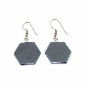 🎉LAST CHANCE 🎉 Earrings Hematite Hexagon