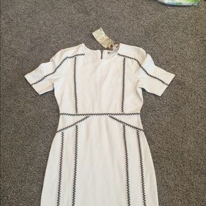 Chelsea and violet white dress NWT