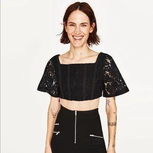 Zara Black Lace Crop Top Sz Med