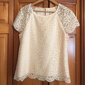 JCrew Lace top with scallop edge