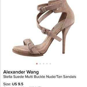 ALEXANDER WANG Sexy Stella Suede New!