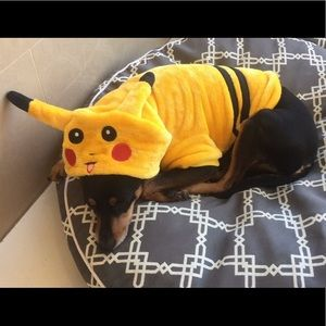 Other - Dog Halloween Outfit