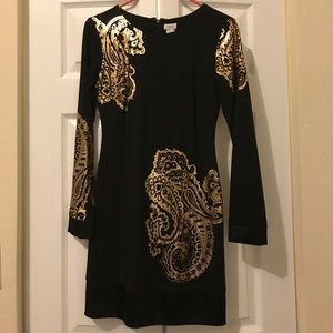 Beautiful Cache Dress