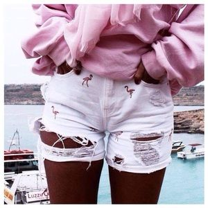 Zara High Rise Flamingo Shorts