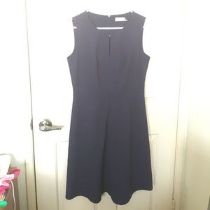 Calvin Klein Navy Fit and Flare dress