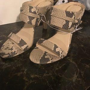 Sexy Calvin Klein heels