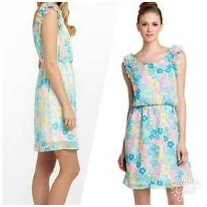 Lilly Pulitzer Danna Dress Spring Fling Floral EUC
