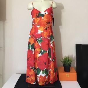 Zara Basic Collection Dress