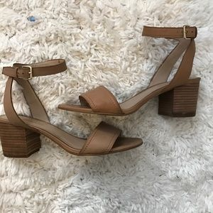 ALDO Leather Heeled Sandals with Buckle Detail