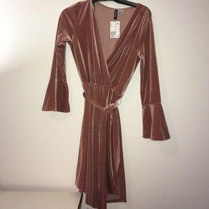 Dust rose velour dress - NWT