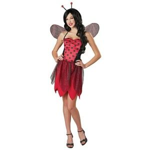 Miss Ladybug Halloween costume