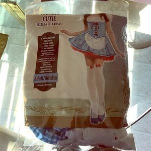 Dorothy(Kansas cutie) costume