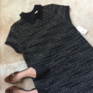 NWT Maison Jules Mini Shift Dress with collar, M