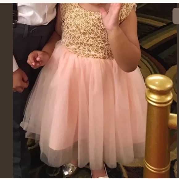 JJs House Other - Girls Pink Gold Tulle Princess Flower Girl Dress