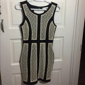 Pniina lace paneled dress