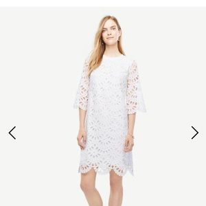 Ann Taylor eyelet shift dress